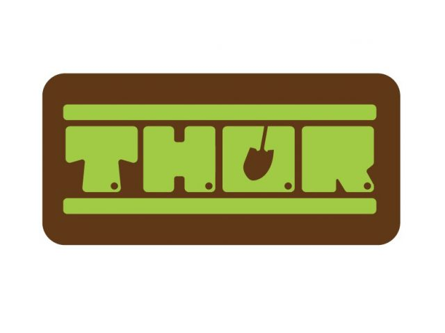 THOR Logo Refinement